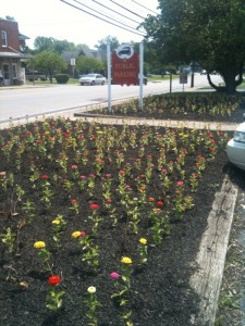 Liberty beautification project, downtown Liberty, Casey County